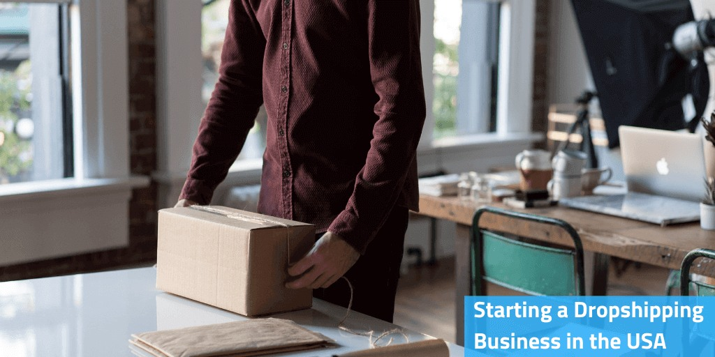 dropshipping business in the USA